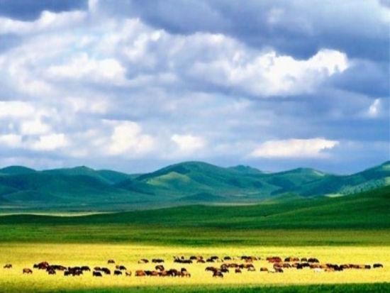水草丰美的广袤土地