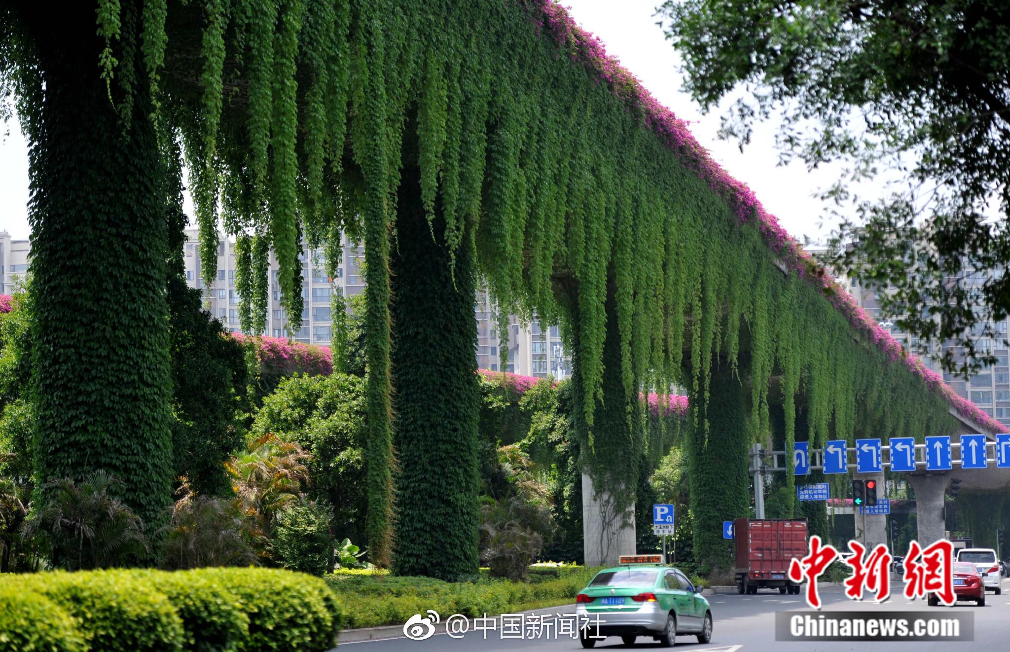 北京:海淀已确诊13例 仅次于丰台、大兴