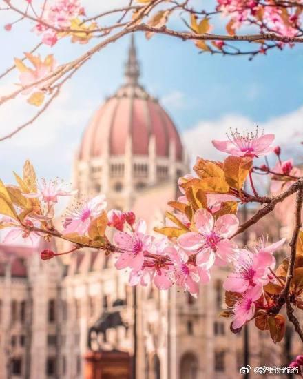 布达佩斯之春