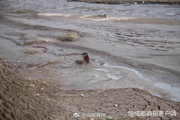 """俄媒:北京世园会将促中俄关系""""更和谐"""""""