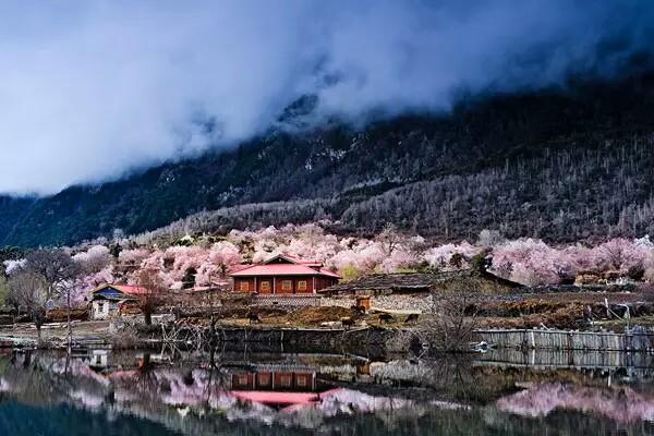 西藏竟然隐藏着一个小瑞士——林芝