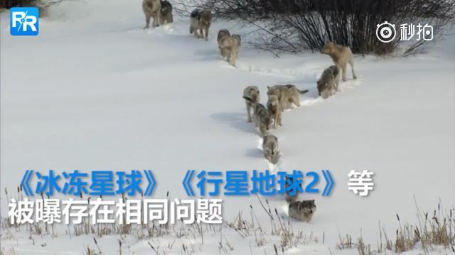 BBC admits to faking scenes in wildlife documentaries