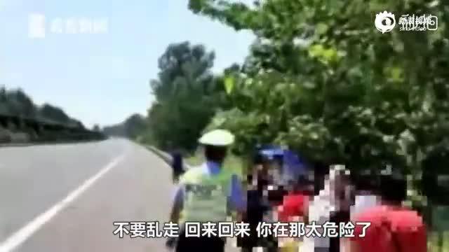 客车爆胎为省钱关空调 乘客集体下车在高速散步避暑