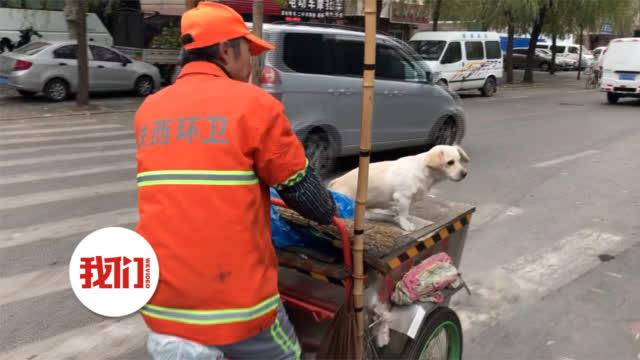 沈阳环卫工带残疾狗狗上下班:我救了它 它也救过我