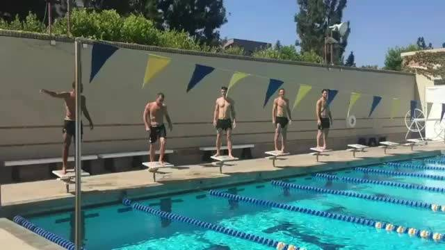 视频-切尔西队内游泳大赛 大家猜猜看谁是冠军?