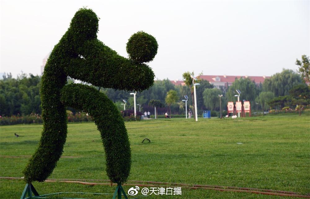 目前,多组全运会比赛排球、击剑、自行车等项目造型的绿植雕像在天津银河广场安装完成,营造出浓郁的全民迎全运的氛围
