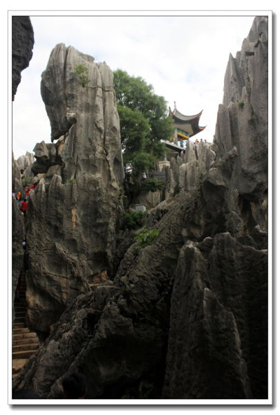 石林景区(图:新浪博客 作者:天航)