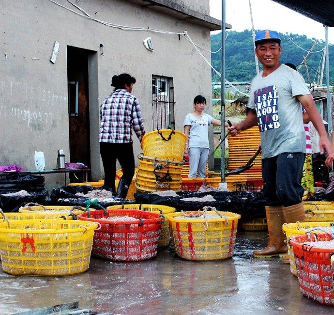 北兜海边渔民装卸虾米