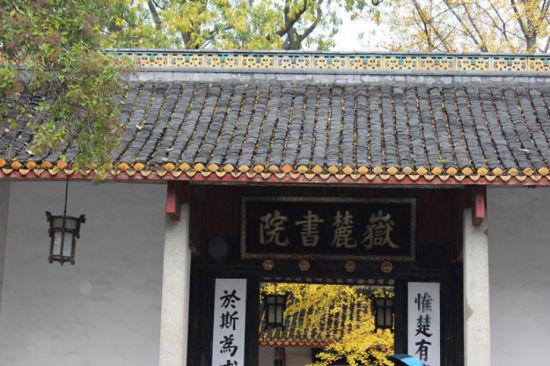 岳麓山红枫实录(图)