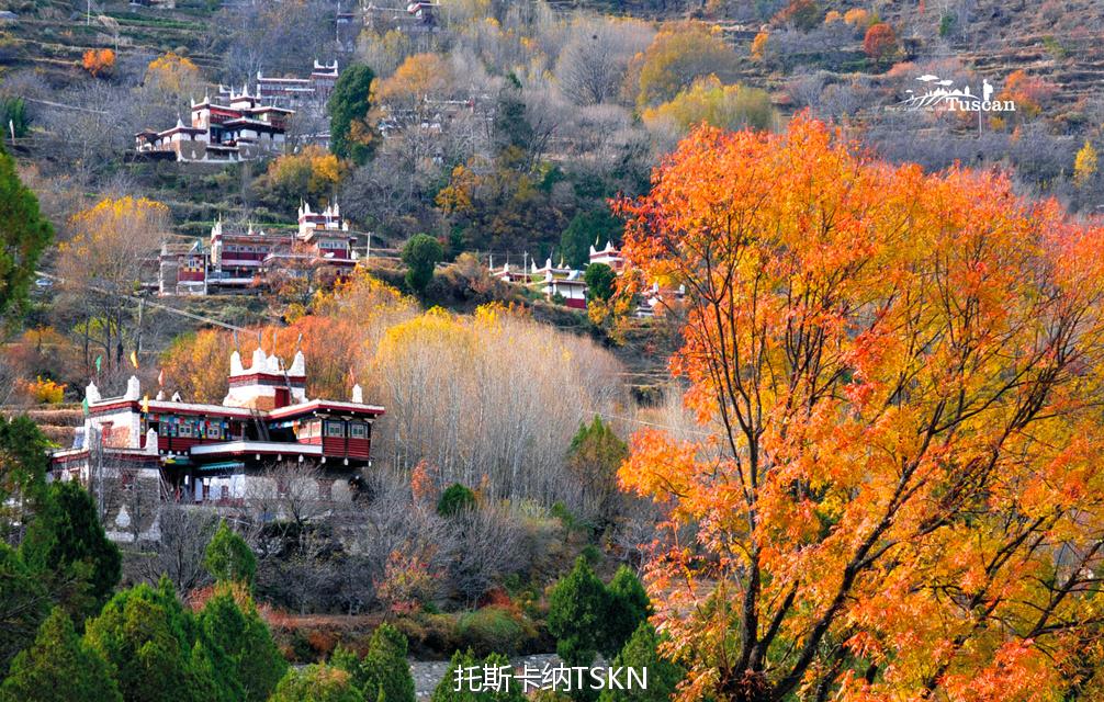 大美四川,你的秋天为何如此靓丽?