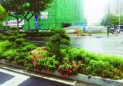 南京珠江路全线杆件减少三分之一