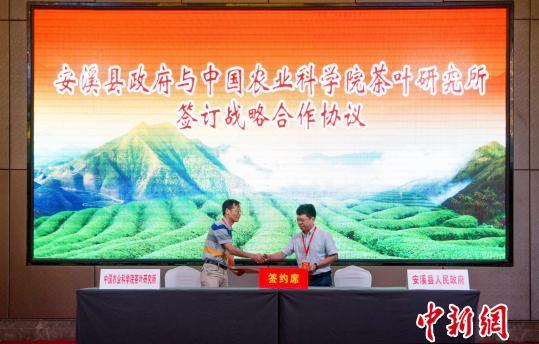 第七届全国茶产业经济研讨会在茶都安溪举行