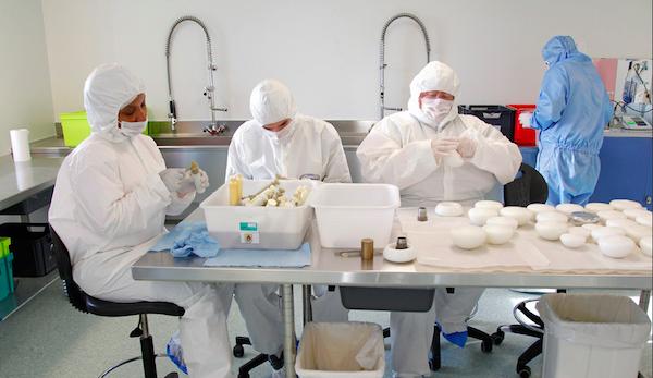 「揭秘」隆胸用的硅胶填充物是如何生产出来的