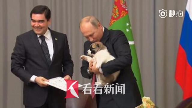 土库曼斯坦总统送软萌小狗庆生 普京又亲又抱举高高一脸幸福
