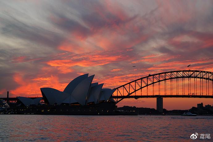 爱上悉尼你只需要一个理由