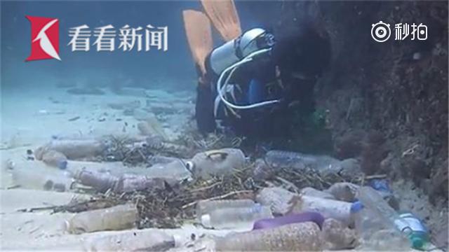 """触目惊心!加勒比海域变成""""垃圾海"""" 塑料微粒进入人类食物链"""