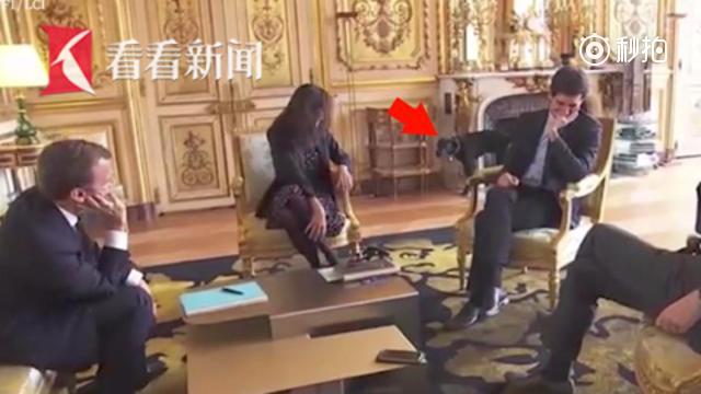 """法国总统带爱犬会见部长 """"第一狗""""却当众撒起尿来"""