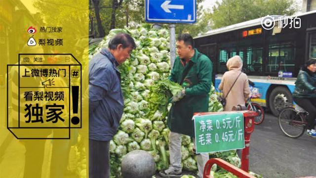 北方人一次买100斤大白菜囤着过冬 南方网友惊呆了