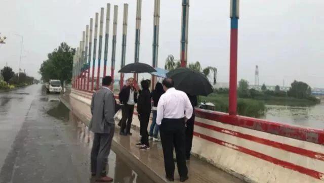 网传南乐湖水污染致鱼类死亡 官方调查后这样回复
