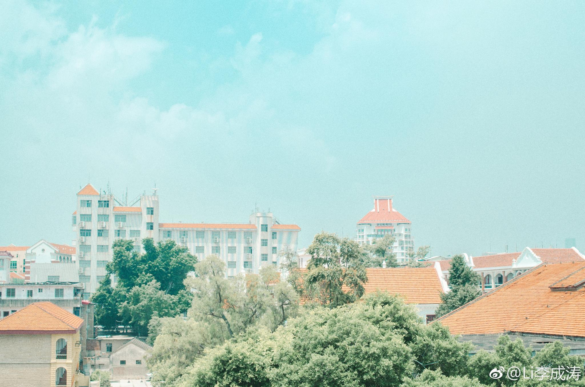 集美学村 小街道 红房顶