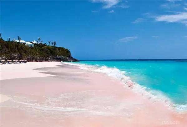 巴哈马群岛上哈勃岛的粉色海滩,最性感的海滩