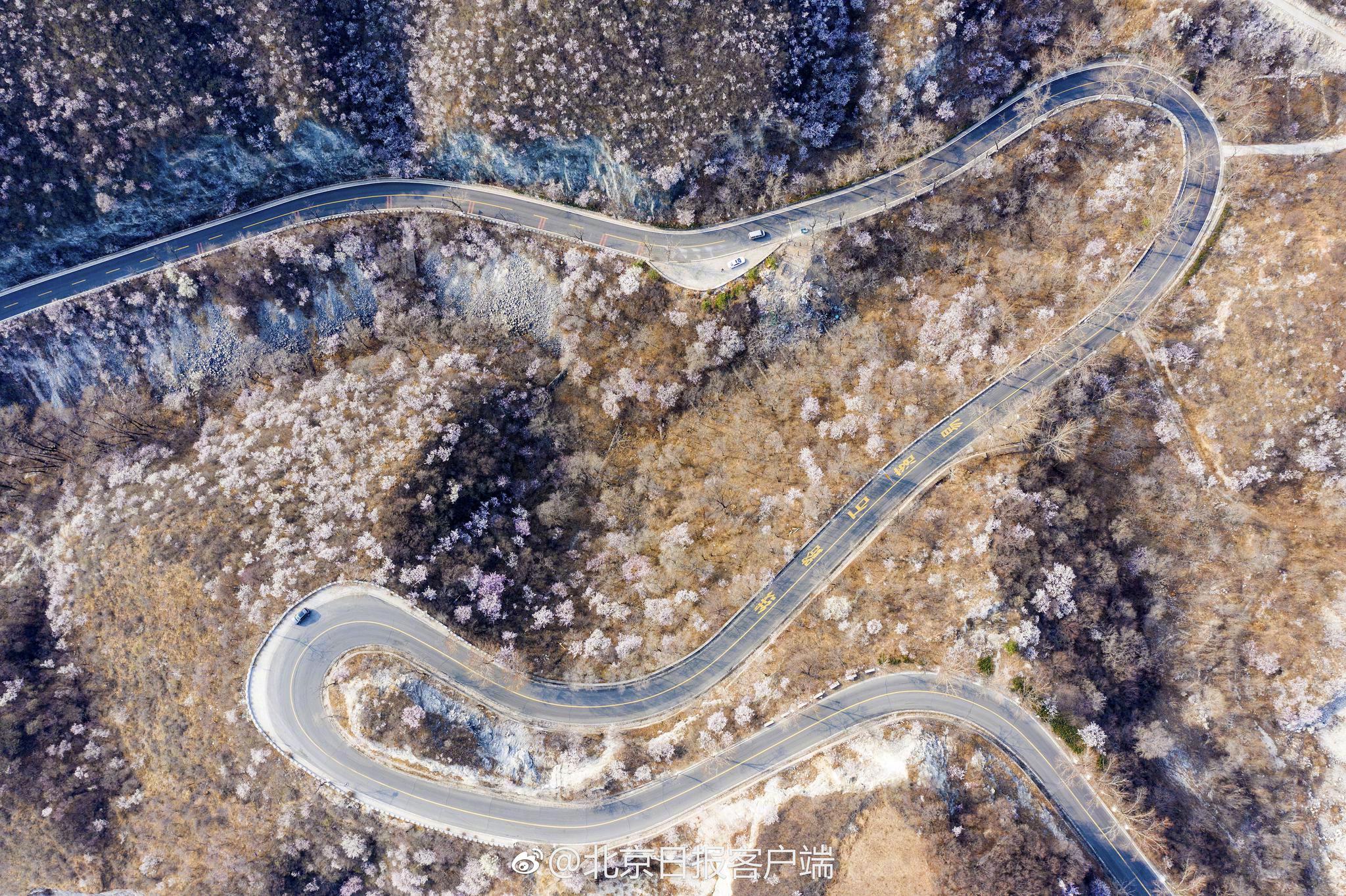 搜救队员在山林发现最后一只外逃豹子脚印:饿了几天跑不远