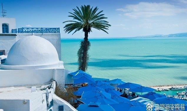 突尼斯蓝白小镇,只想与你一块儿去看看。 .