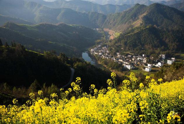 春天到了,开上它去跑山,全世界的花香都是你的