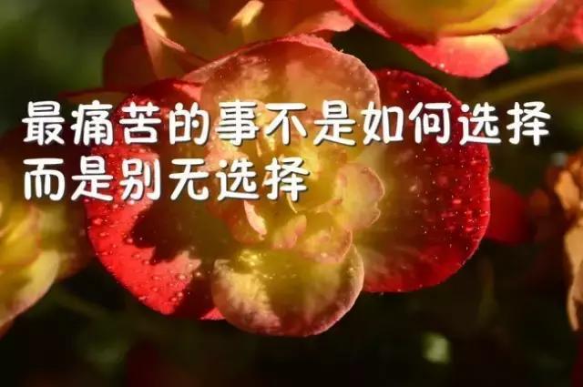 正能量励志的句子 励志唯美图片带字