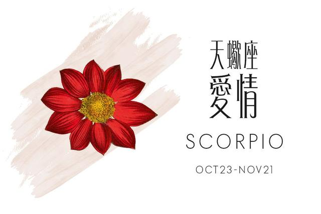 天蝎座2019星座运程预测+爱情锦囊天秤座带什么手串图片