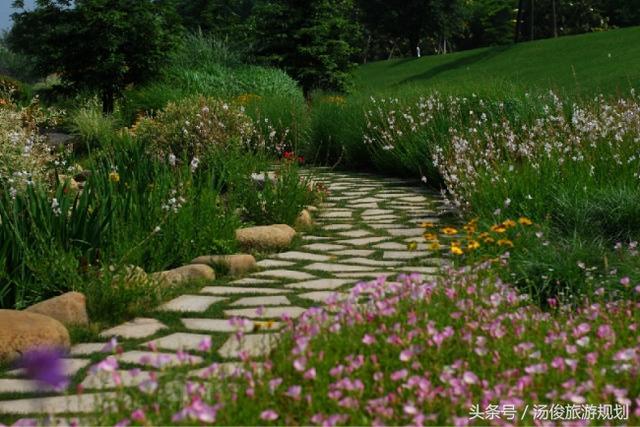 景观设计之旱溪花境景观!|花境|植物园|设计院展会香水设计图图片