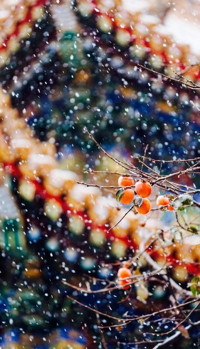 """白雪镶红墙,碎碎坠琼芳""""一下雪,北京就变成了北平"""