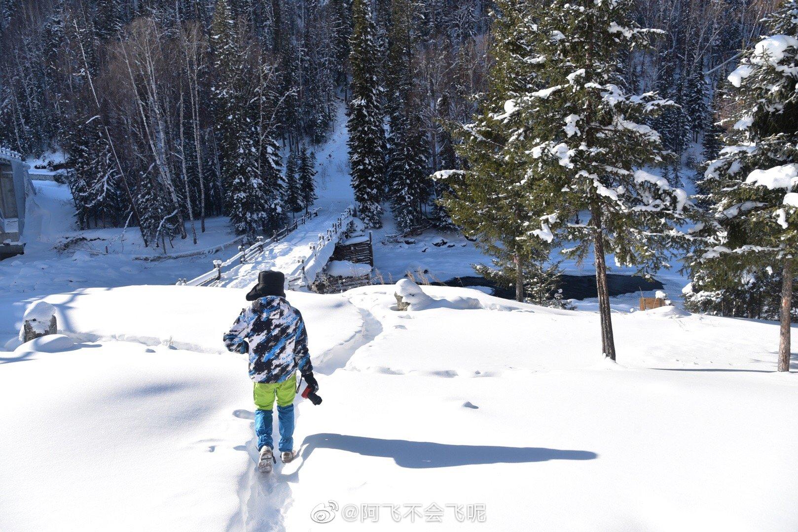 冬天的新疆有多美,只有见过的人才知道