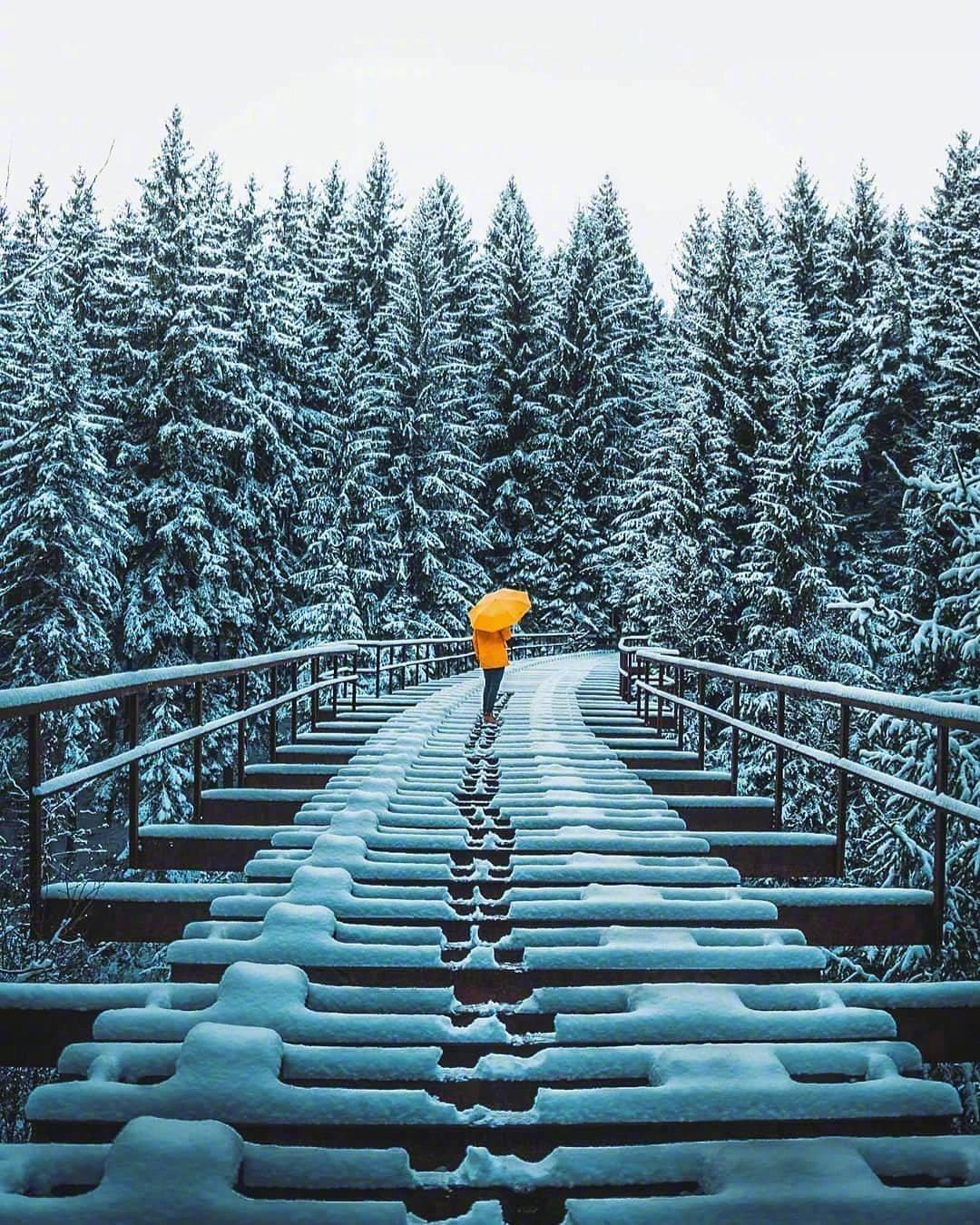 德国巴伐利亚的冬季,美不胜收