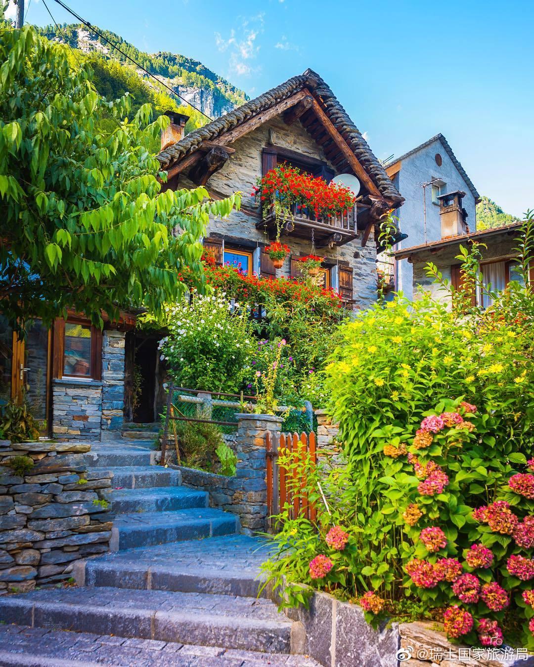 瑞士人宅家收拾花园
