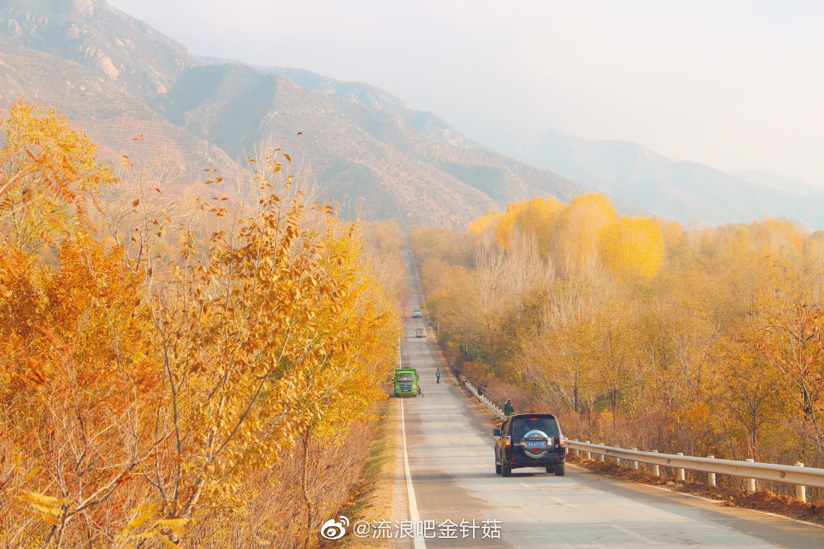 去往河北的路上,五彩斑斓的秋天
