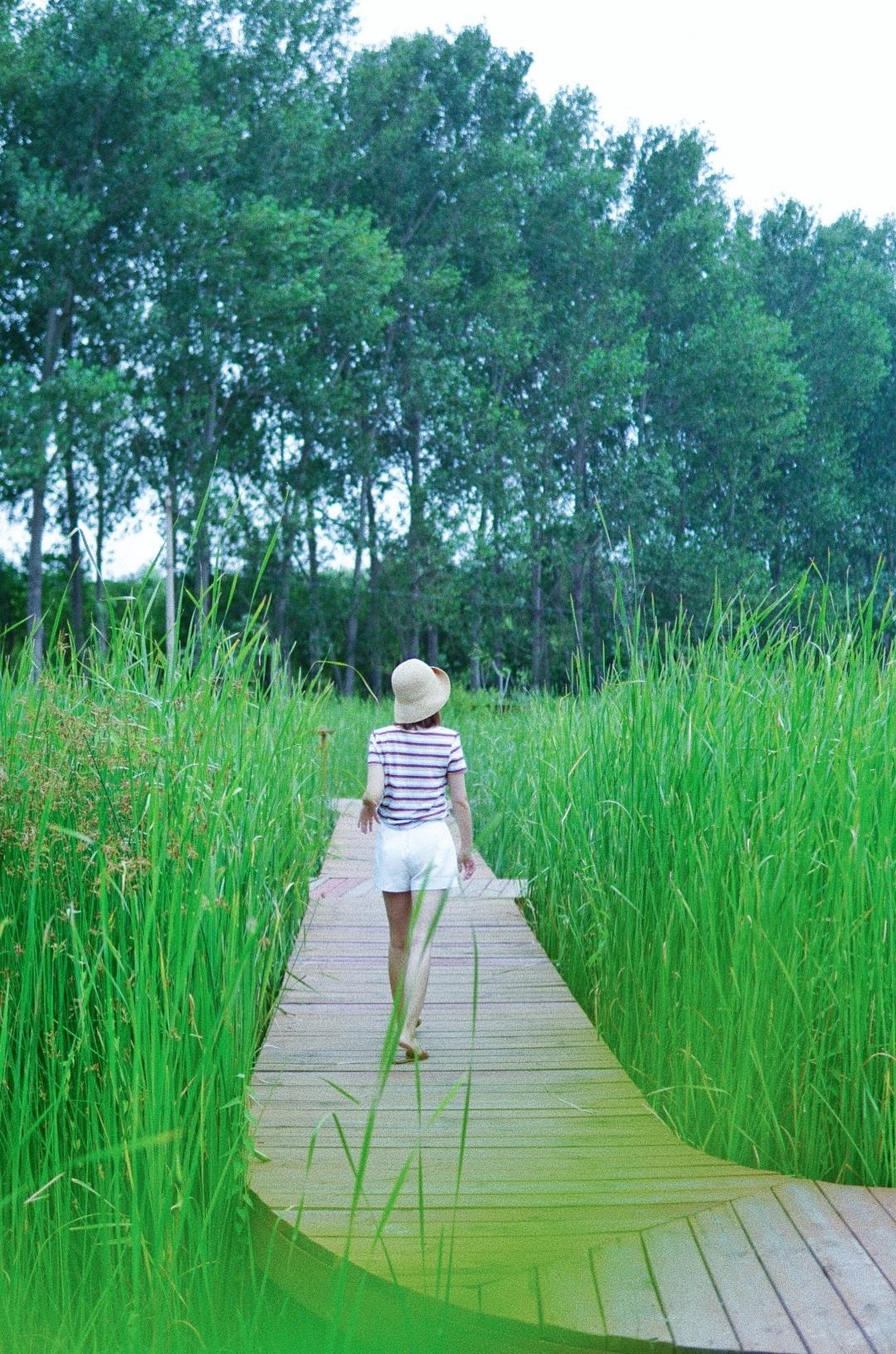 北京超级大的湿地公园