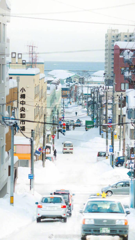 北海道的雪 白色的世界