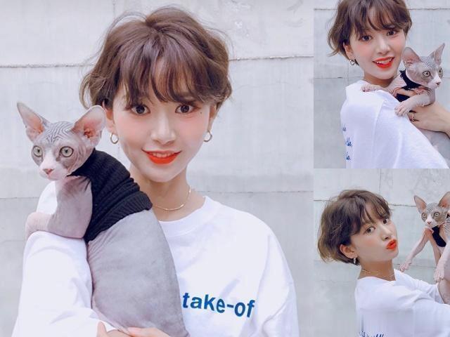 你的发型过时了,2019流行这4款短发,尤其适合方脸的女生!图片