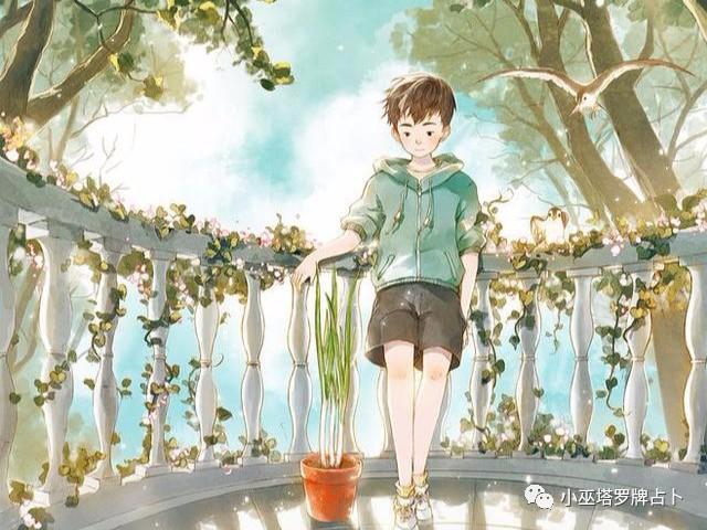 小巫塔罗牌占卜:灵数占卜最近我适合做什么让生活更充实?