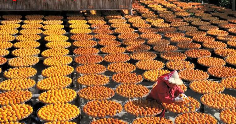 每当这两种水果大丰收的时候,农民们都不知道是