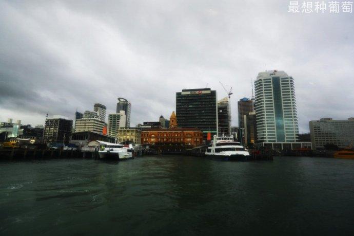 自驾畅游新西兰(29)---达文波特小镇和帕尼尔玫瑰花园
