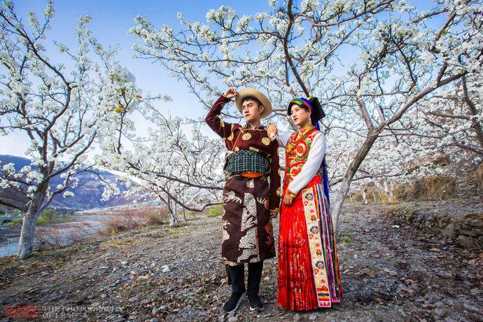 四川万亩梨花盛开如仙境一般,春游必打卡之地