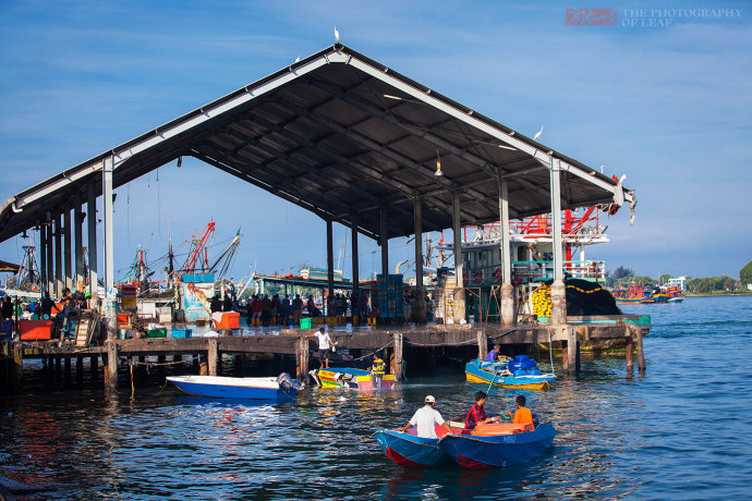 马来西亚沙巴 这里的海鲜卖出了白菜价