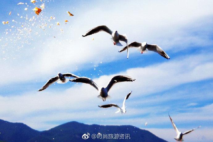 诗情画意的泸沽湖