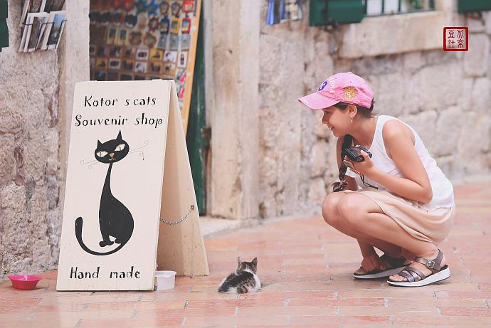 爱猫的女孩