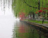 散文:杏花烟雨,四月天