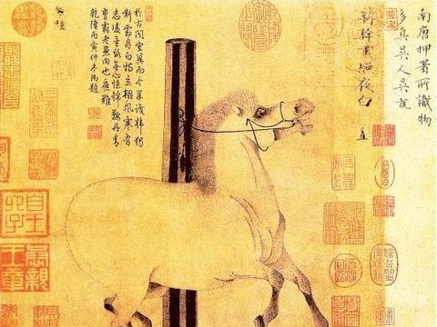 隋唐名画赏析:韩幹《照夜白图》韦偃《双骑图》阎立本《步辇图》