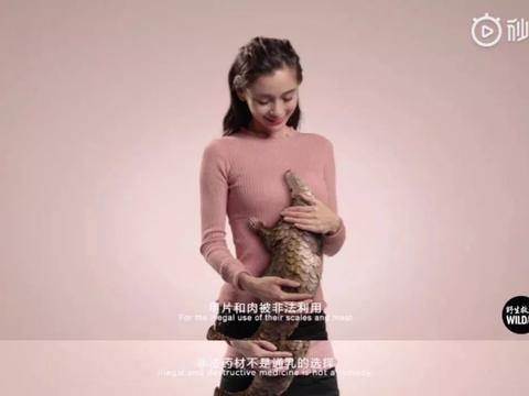 Angelababy拍公益广告,因文案失误惹争议