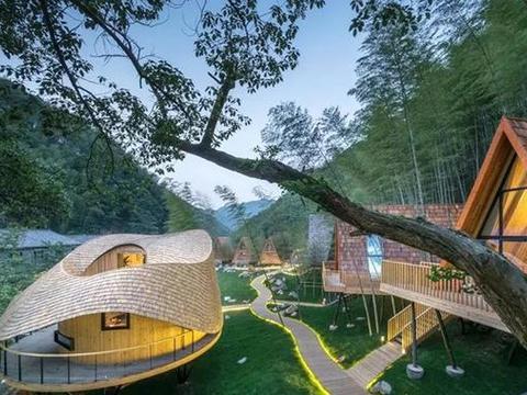 美宿分享|这家号称全球十大必睡民宿,华东最美度假树屋!